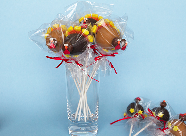 Turkey-Cake-Pops-9